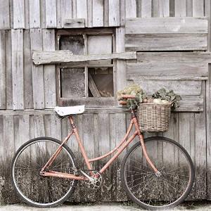 Las mejores bicicletas vintage
